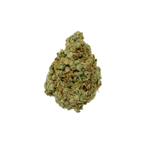 Jack Herer - Sativa - The Healing Co